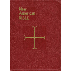 Bible, Red, Black, or White Cover