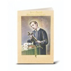 Book, Saint Gerard Novena and Prayers
