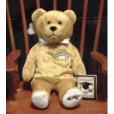 Bear, Graduation, Gold